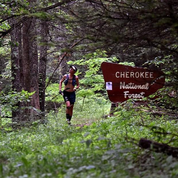 No parque nacional Cherokee, nas proximidades de Erwin, Tennessee (Reprodução/Instagram)